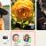 分享时,苹果手机是如何关闭联系信息的?