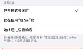 使用 iPhone 12 时 Siri 不会正常回应怎么办?