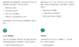 在 iPhone 12 上通过 Siri 可实现哪些操作?